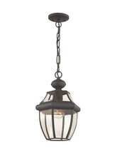 Livex Lighting 2152-07 - 1 Light Bronze Outdoor Chain Lantern