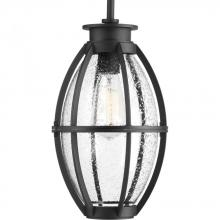 Progress P550005-031 - 1-Lt. Black Hanging Lantern