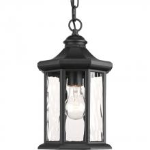 "Progress P6529-31 - 1-Lt. Hanging Lantern (7"")"